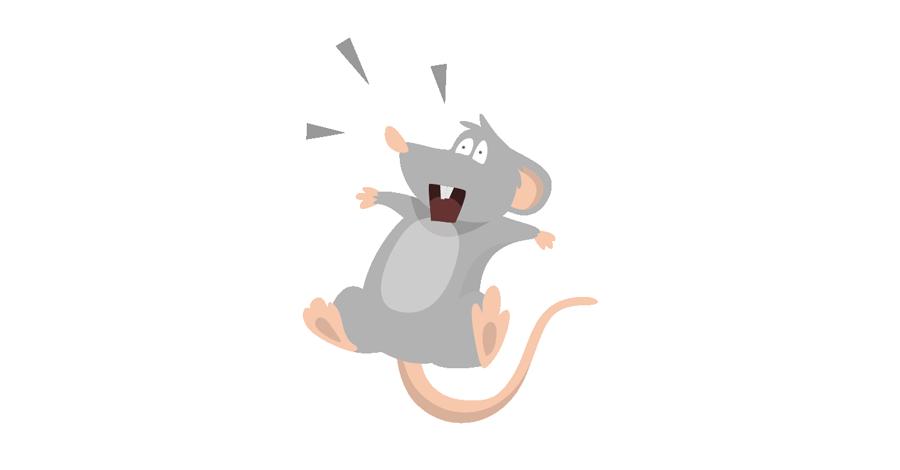 Come Stanare Un Topo In Casa